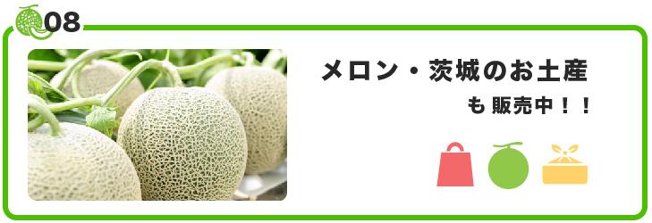 今年も茨城県産の肉イベント[肉メシバトル]開催 メロン・茨城のお土産販売もございます。